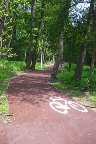 Radweg durch Ostsee-Strandlandschaft